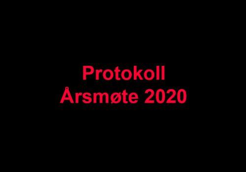 protokoll-2020